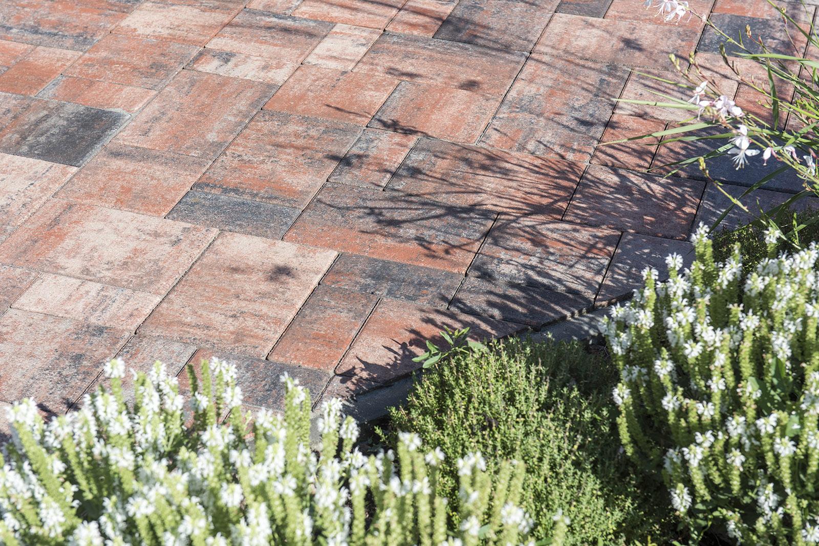 Hľadáte ideálnu dlažbu k Vášmu domu  - Katalóg firiem  798c35a343